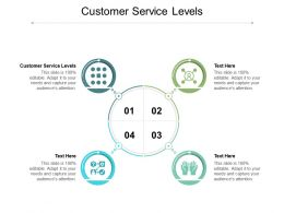 Customer Service Levels Ppt Powerpoint Presentation Infographics Format Ideas Cpb