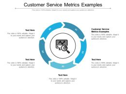 Customer Service Metrics Examples Ppt Powerpoint Presentation Pictures Objects Cpb