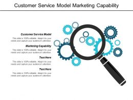 Customer Service Model Marketing Capability Corporate Brainstorming Networking Strategy Cpb