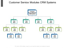 Customer Service Modules CRM Systems Ppt Powerpoint Presentation Inspiration Portfolio Cpb