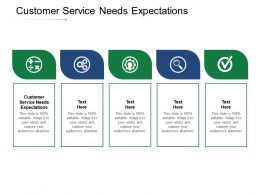 Customer Service Needs Expectations Ppt Powerpoint Presentation Layouts Picture Cpb