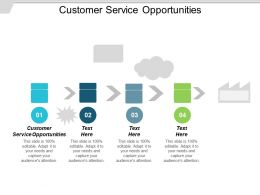 Customer Service Opportunities Ppt Powerpoint Presentation Gallery Master Slide Cpb