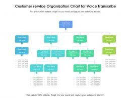 Customer Service Organization Chart For Voice Transcribe Infographic Template