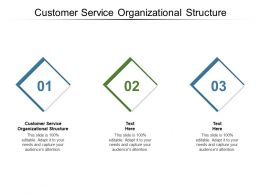 Customer Service Organizational Structure Ppt Powerpoint Presentation Professional Show Cpb
