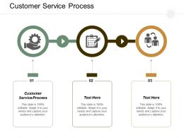 Customer Service Process Ppt Powerpoint Presentation Infographics Summary Cpb