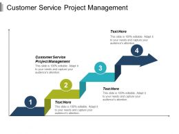 Customer Service Project Management Ppt Powerpoint Presentation Infographic Template Summary Cpb