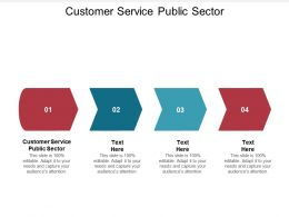 Customer Service Public Sector Ppt Powerpoint Presentation Gallery Slide Download Cpb