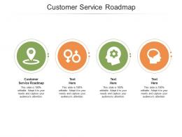 Customer Service Roadmap Ppt Powerpoint Presentation Styles Graphic Tips Cpb