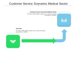 Customer Service Scenarios Medical Sector Ppt Powerpoint Presentation Layouts Gridlines Cpb