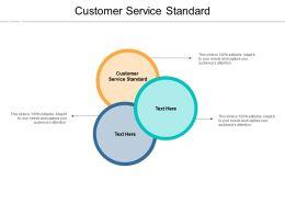 Customer Service Standard Ppt Powerpoint Presentation Gallery Designs Cpb