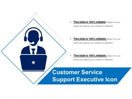 Customer Service Support Executive Icon