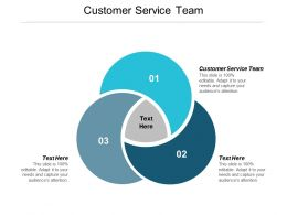 Customer Service Team Ppt Powerpoint Presentation Icon Template Cpb