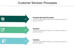 Customer Services Processes Ppt Powerpoint Presentation Inspiration Icon Cpb
