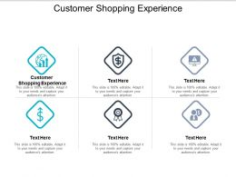 Customer Shopping Experience Ppt Powerpoint Presentation File Example Introduction Cpb