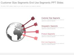 Customer Size Segments End Use Segments Ppt Slides
