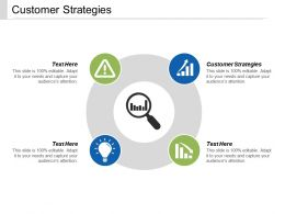 Customer Strategies Ppt Powerpoint Presentation Infographic Template Files Cpb