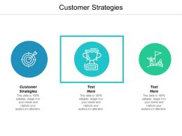 Customer Strategies Ppt Powerpoint Presentation Show Maker Cpb