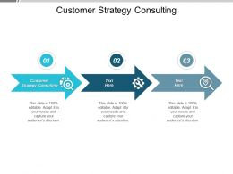 Customer Strategy Consulting Ppt Powerpoint Presentation Icon Tips Cpb