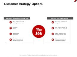 Customer Strategy Options Expansion Ppt Powerpoint Presentation Professional File Formats