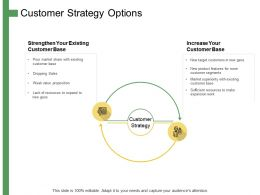 Customer Strategy Options Ppt Powerpoint Presentation Summary Graphics Tutorials