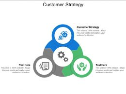 Customer Strategy Ppt Powerpoint Presentation Pictures Diagrams Cpb