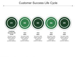 Customer Success Life Cycle Ppt Powerpoint Presentation Pictures Graphics Cpb