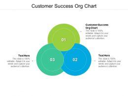 Customer Success Org Chart Ppt Powerpoint Presentation Portfolio Graphics Example Cpb