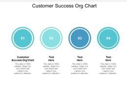 Customer Success Org Chart Ppt Powerpoint Presentation Show Brochure Cpb