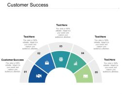 Customer Success Ppt Powerpoint Presentation Professional Graphics Cpb