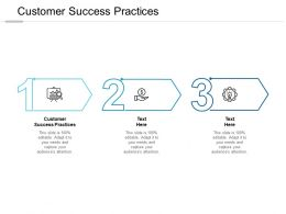 Customer Success Practices Ppt Powerpoint Presentation Inspiration Microsoft Cpb
