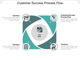 Customer Success Process Flow Ppt Powerpoint Presentation Styles Graphics Pictures Cpb
