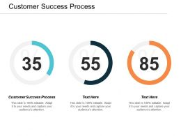 Customer Success Process Ppt Powerpoint Presentation Slides Aids Cpb