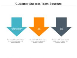 Customer Success Team Structure Ppt Powerpoint Presentation Slides Background Cpb