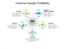 Customer Supplier Profitability Ppt Powerpoint Presentation Summary Examples Cpb