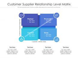 Customer Supplier Relationship Level Matrix