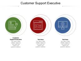 Customer Support Executive Ppt Powerpoint Presentation Infographic Template Cpb