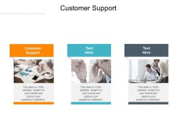 Customer Support Ppt Powerpoint Presentation Gallery Visuals Cpb