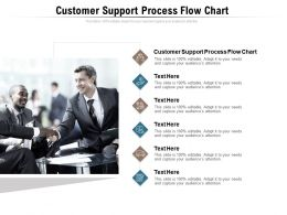 Customer Support Process Flow Chart Ppt Powerpoint Presentation Infographics Structure Cpb