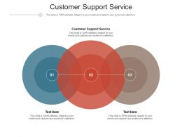 Customer Support Service Ppt Powerpoint Presentation File Aids Cpb