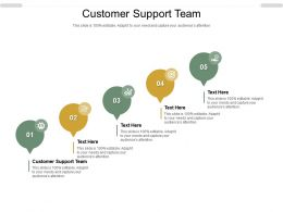Customer Support Team Ppt Powerpoint Presentation Gallery Professional Cpb