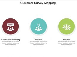 Customer Survey Mapping Ppt Powerpoint Presentation Icon Themes Cpb