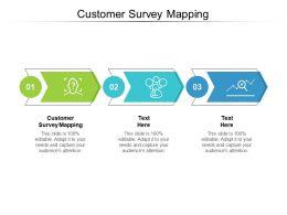Customer Survey Mapping Ppt Powerpoint Presentation Inspiration Brochure Cpb