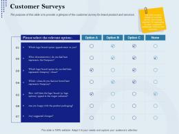 Customer Surveys Rebranding Approach Ppt Topics