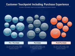 Customer Touchpoint Including Purchase Experience