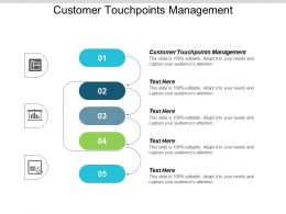 Customer Touchpoints Management Ppt Powerpoint Presentation Icon Design Ideas Cpb