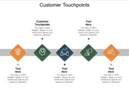 Customer Touchpoints Ppt Powerpoint Presentation Slides Designs Download Cpb