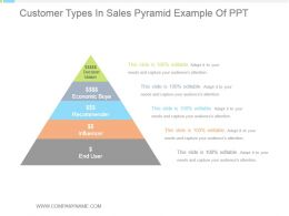 Customer Types In Sales Pyramid Example Of Ppt