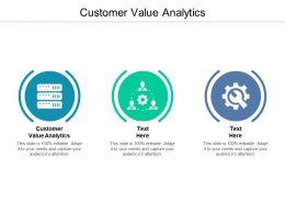 Customer Value Analytics Ppt Powerpoint Presentation Inspiration Example Cpb