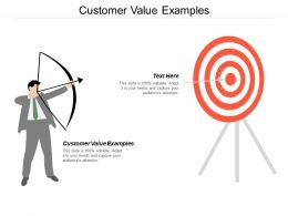 Customer Value Examples Ppt Powerpoint Presentation File Design Ideas Cpb