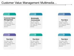 Customer Value Management Multimedia Connectivity Corporate Level Strategy